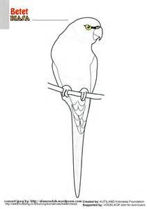 mewarnai gambar burung indonesia alamendah s