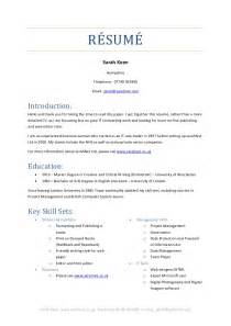 Brief Resume Template by 2014 Brief Resume Of Skill Sets Keen