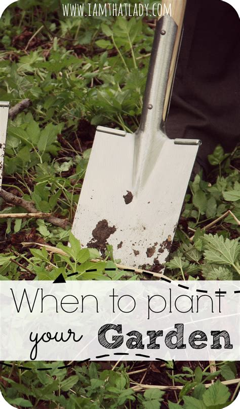 Best Time To Plant Garden by When To Plant A Garden