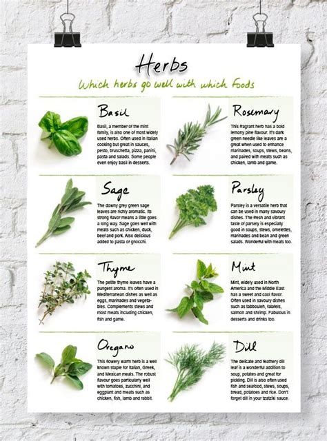 quick reference herb chart cooking herbs recipe binders