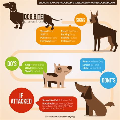 how to small dogs not to bite bite prevention facts infographic goodwin scieszka