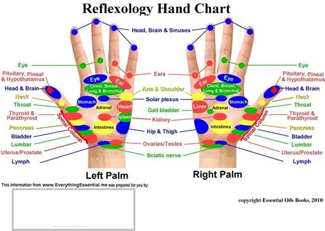 reflexology diagram my own thoughts acupressure reflexology charts collection