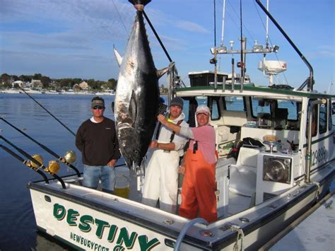fishing boats for sale tuna bluefin tuna off of cape ann the hull truth boating