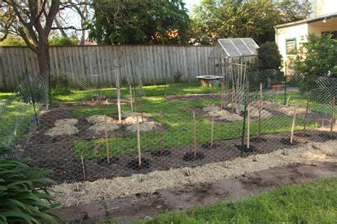 backyard farming blog blog the backyard farm
