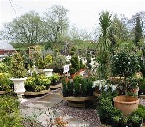 we visit the amerton garden centre in stafford