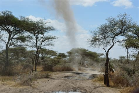 frequently large amounts travel through tanzania to serengeti national park the dusty tracks on the