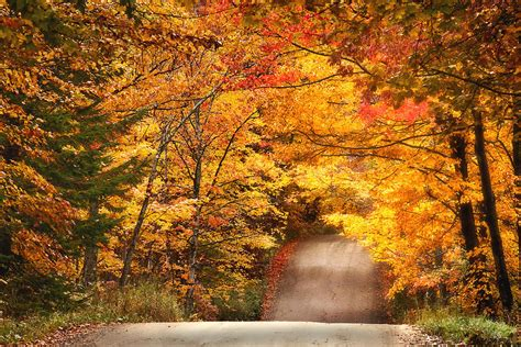 autumn country road photograph by wade crutchfield