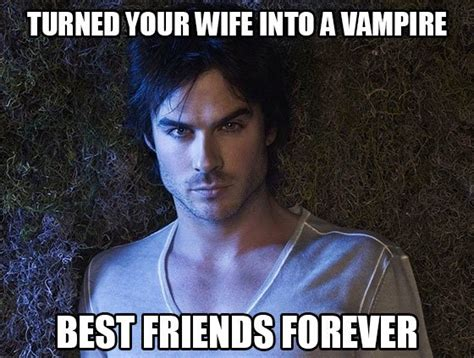 Tvd Memes - the vire diaries memes tvd damon salvatore funny