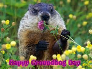 groundhog day is 301 moved permanently