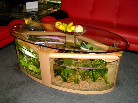 coffee table fish tank plans plans   versedmzc