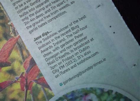 irish sunday times business section sunday times jane powers november 11th 2012