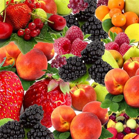 images of fruit free photo fruit fruits fruit mix nature free image