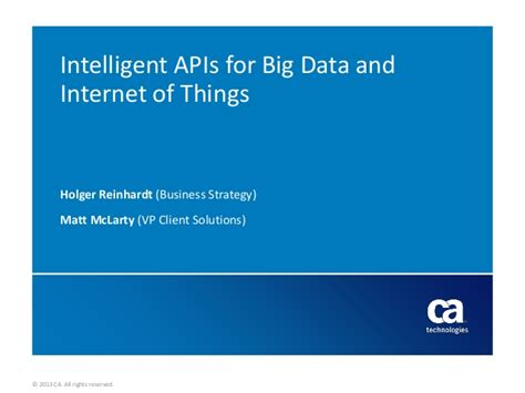 Mobile Web And Intelligent Information Systems intelligent apis for big data iot create customized data views for
