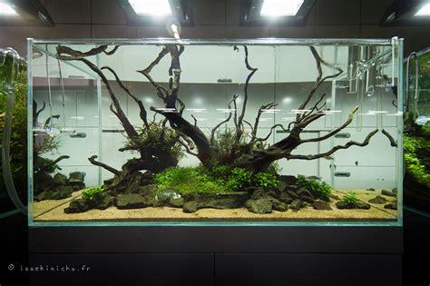 aquarium design amano indonesia the aquatic plant society happy birthday takashi amano