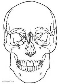 skull color free coloring pages of human skull labeling