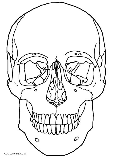 Free Coloring Pages Of Human Skull Labeling