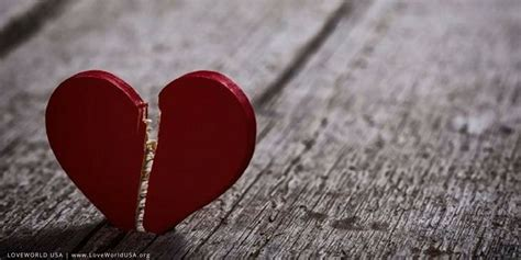 galo com galeria love broken world love heals the broken hearted loveworld usa