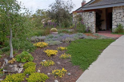 Drought Tolerant Landscape Design Photo Gallery Drought Tolerant Garden Design