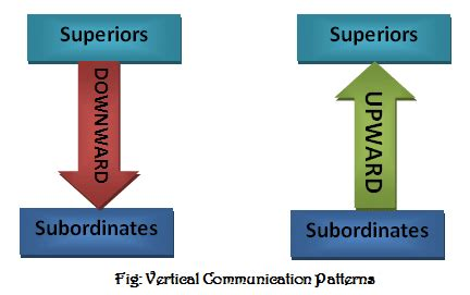 patterns of business communication in an organization what is vertical communication types of vertical