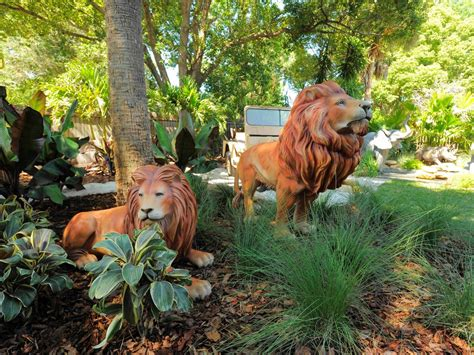 backyard safari magnificent backyard safari landscaping ideas and