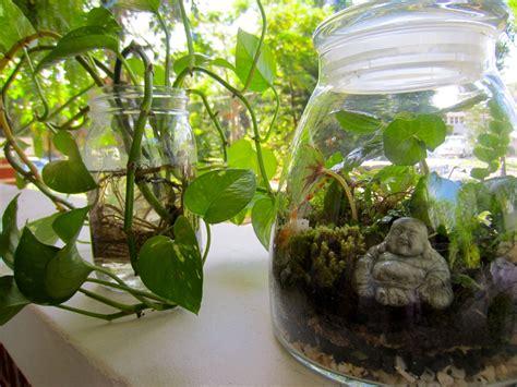 Handmade Terrarium - diy terrarium tutorial the journey junkie