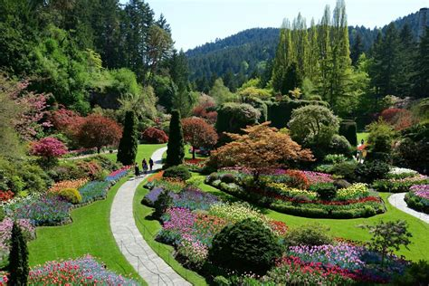 Gardens On by Butchart Gardens Express Tour