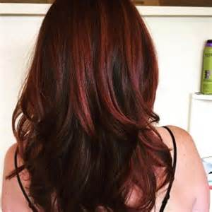 highlights in hair best 25 brown hair red highlights ideas on pinterest