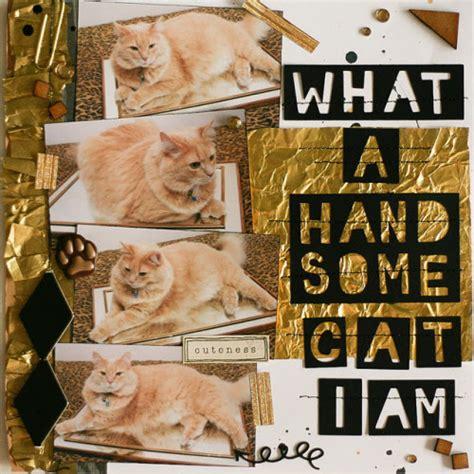 scrapbook layout cat handsome cat scrapbook layout