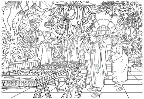 harry potter coloring book where to buy harry potter herbology class by irishmanreynolds on deviantart