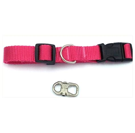 collar with name tag solid adjustable standard collar free stainless i d pet name tag ebay