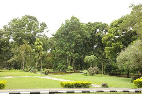 Bali Botanical Garden Near Mount Batur Bali Botanic Gardens