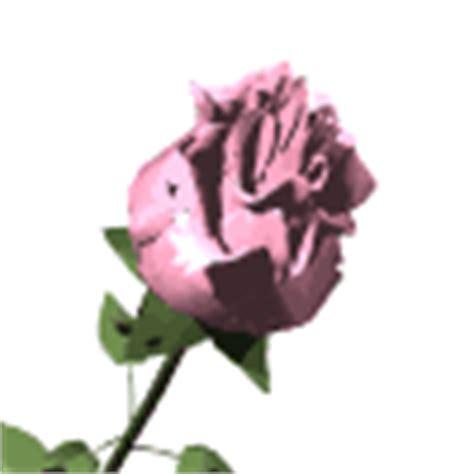 wallpaper bunga cantik gif gambar animasi bergerak bunga cantik dan lucu
