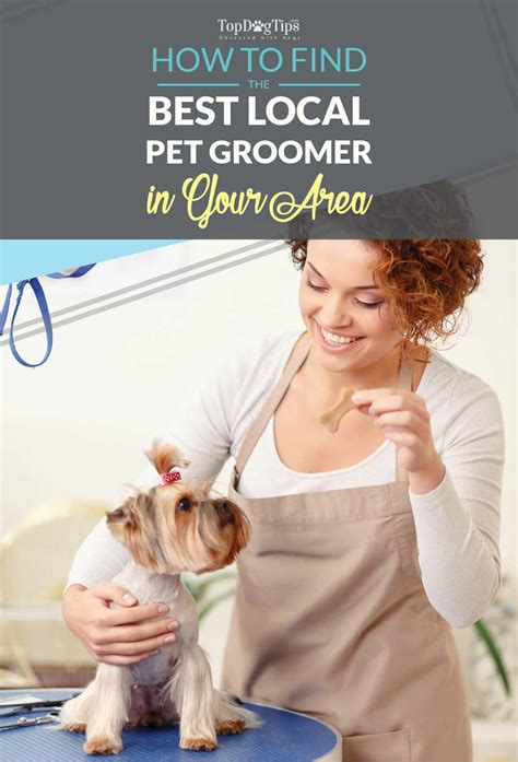 How To Search For On In Your Area How To Find Local Groomers In Your Area And How To Them