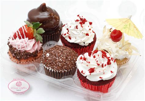 Gourmet Cupcakes by Dainty Gourmet Cupcakes Assorted 6 Pack Dainty Affairs