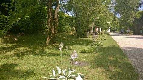 der botanische garten wien spaziergang durch den botanischen garten der uni wien