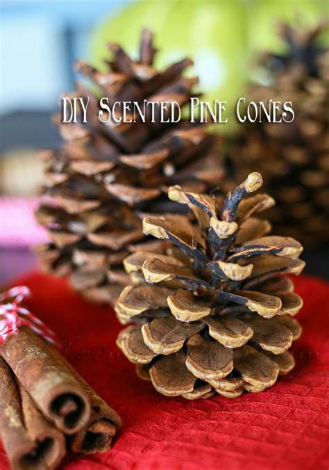 diy decorations pine cones diy scented pine cones kleinworth co