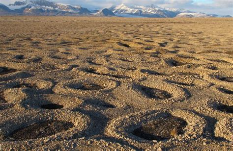 patterned ground formation stone circles philosophical transactions of the royal