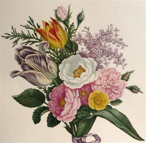 spring summer bouquet of flowers book plate botanical art