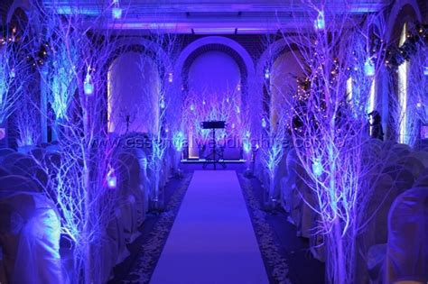 winter led lights winter wedding aisle white birch led lighting