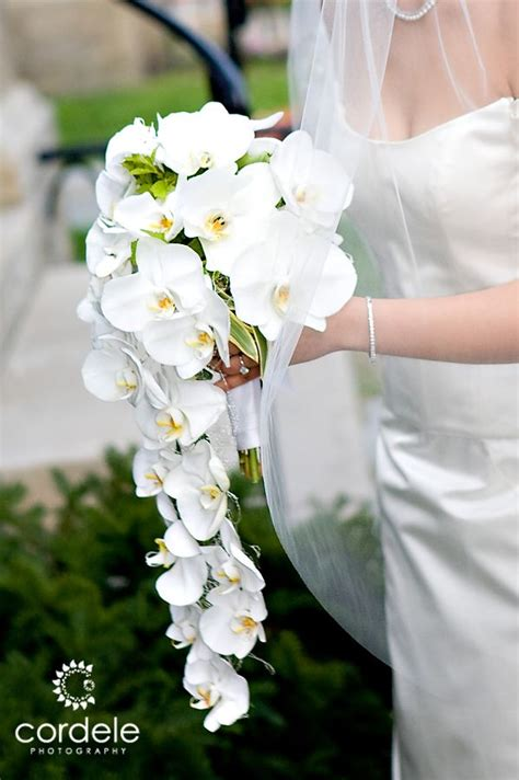 Flower Boutique For Wedding by White Orchids Wedding Boutique Flowers White