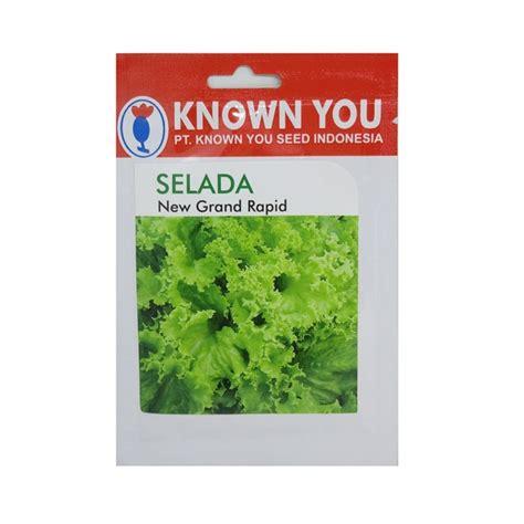 Benih Brokoli Green Calabrese benih selada new grand rapid 5 gram known you seed