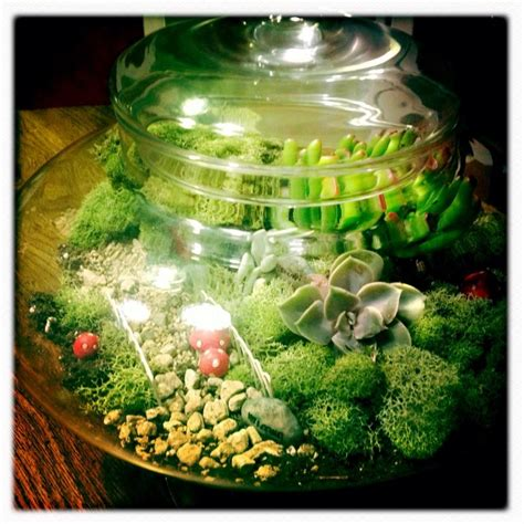 fairy terrarium 9 lush terrariums how to make your own