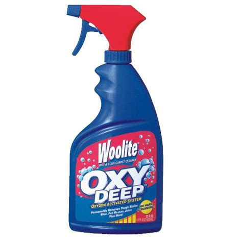 woolite carpet cleaner bissell woolite oxy carpet cleaner 22oz