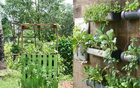 vertical gardening auntie dogma s garden spot