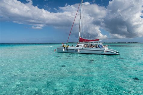 catamaran for sale grand cayman catamaran in stingray city photograph landscape travel