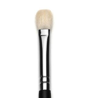 Sigma Giveaway - giveaway closed sigma travel e25 blending brush