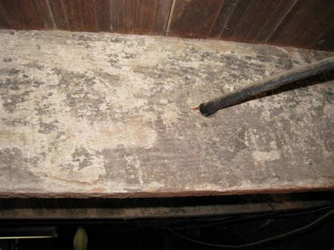 is this mold on basement joists diy forums