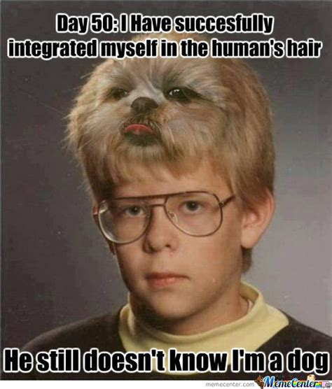 really bad haircut meme bad hair day memes best collection of funny bad hair day