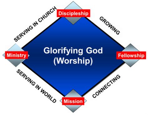 purpose driven church bible study