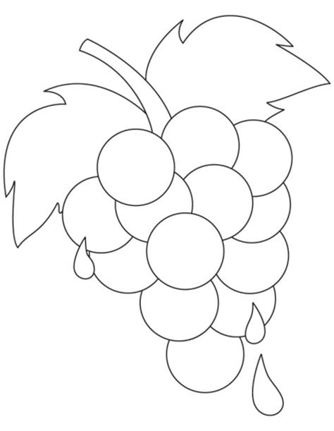 preschool grapes coloring page 8 best grapes coloring pages images on pinterest